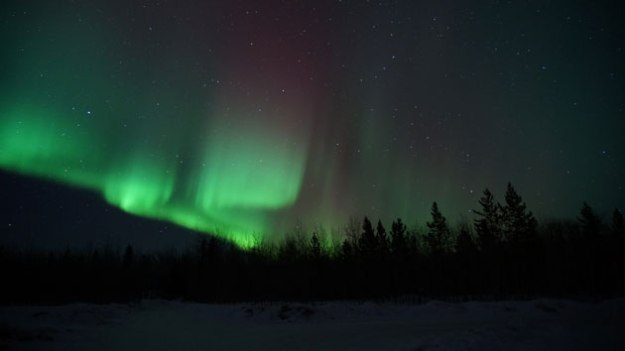The Northern Lights in the Yukon Territories. Probably the most beautiful thing I've ever seen. A priceless moment.
